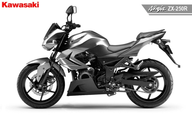 Ninja 250 R naked